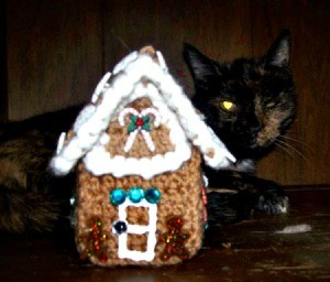 crochet gingerbread house with cat in background