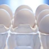 closeup of eggs in Styrofoam carton