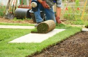 man kneeling to lay lawn sod
