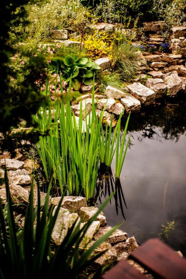 Cleaning a Garden Pond ThriftyFun