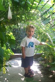Garden Tunnel for Kids - young boy standing inside the tunnel