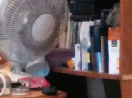 Cleaning Fans