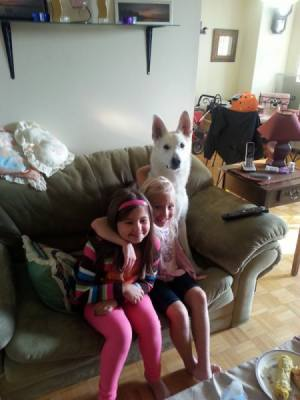 dog on couch with children