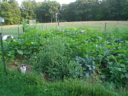 husband and Annie in garden