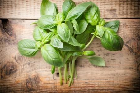 Recipes Using Fresh Basil