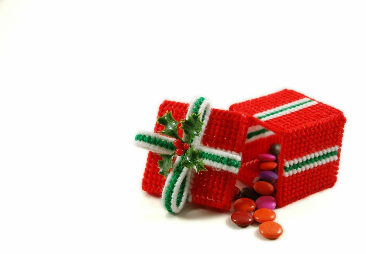 Plastic Canvas Christmas.Making Plastic Canvas Christmas Ornaments Thriftyfun