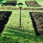 sunken garden beds