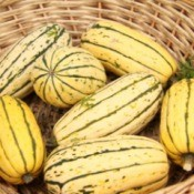 basket of sweet potato squash