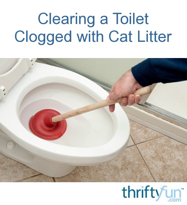 Clearing a Toilet Clogged with Cat Litter | ThriftyFun