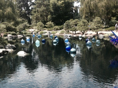 blue glass globes floating tranquilly in a pond