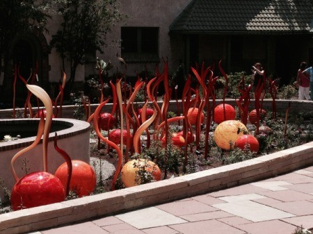 flock of Flamingo and orange globes in a pond