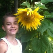 young boy with a large sunflower