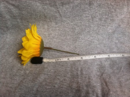 measuring stem length
