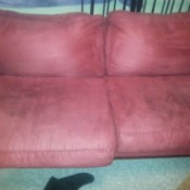 stains on suede couch
