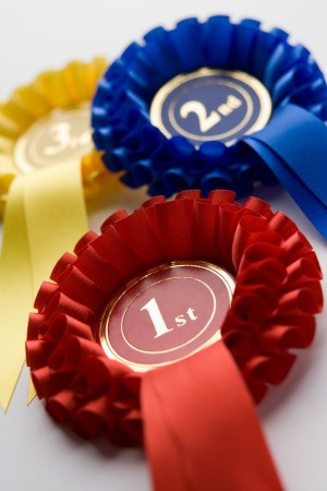 red, blue, and yellow prize ribbons