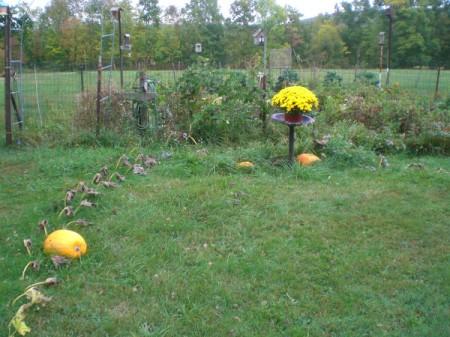 Escaping Pumpkins