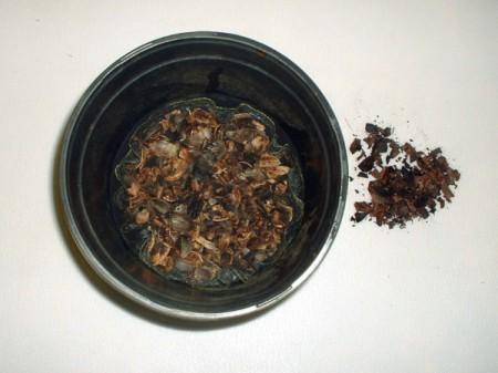 view down into pot with cloth and shells