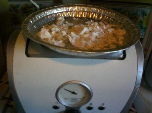 egg shells in aluminum pan on top of toaster