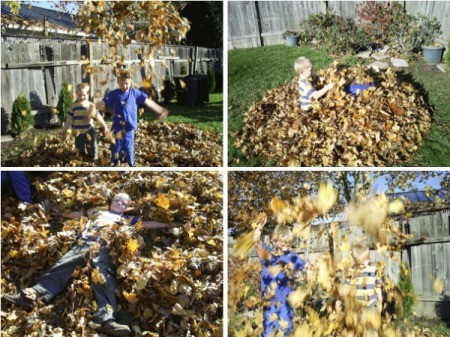 Boys Playing In Leaves