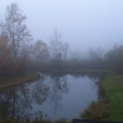 Morning Fog Over The Pond