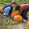 two young girls choosing pumpkins