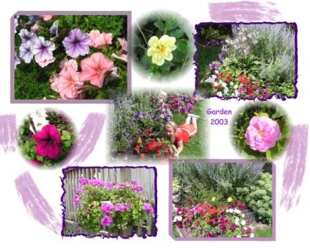 montage photos of garden