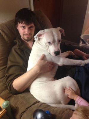 young man holding a white dog