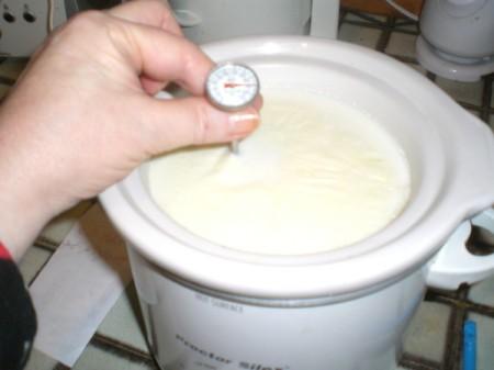 Crock Pot Yogurt - check temperature