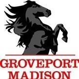 stallion mascot