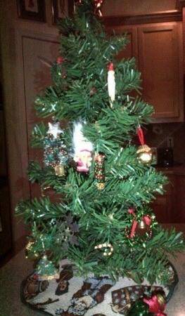 jewelry decorated tree