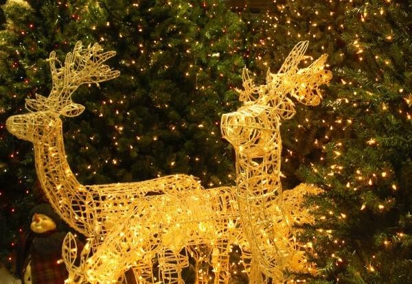 lighted christmas reindeer display - Outdoor Christmas Displays