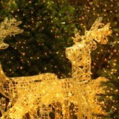 lighted Christmas reindeer display