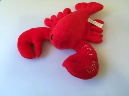 lobster with missing eye