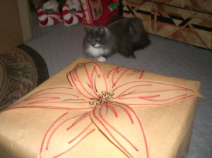poinsettia paper flower on package
