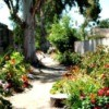 View down the path garden.