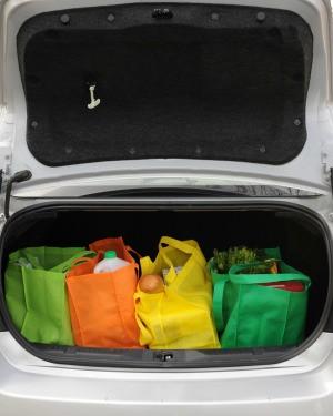 Groceries in Car Trunk
