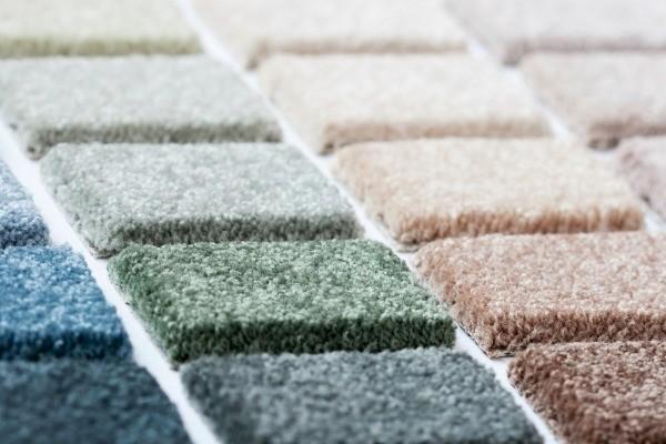 Carpet Color Advice Thriftyfun