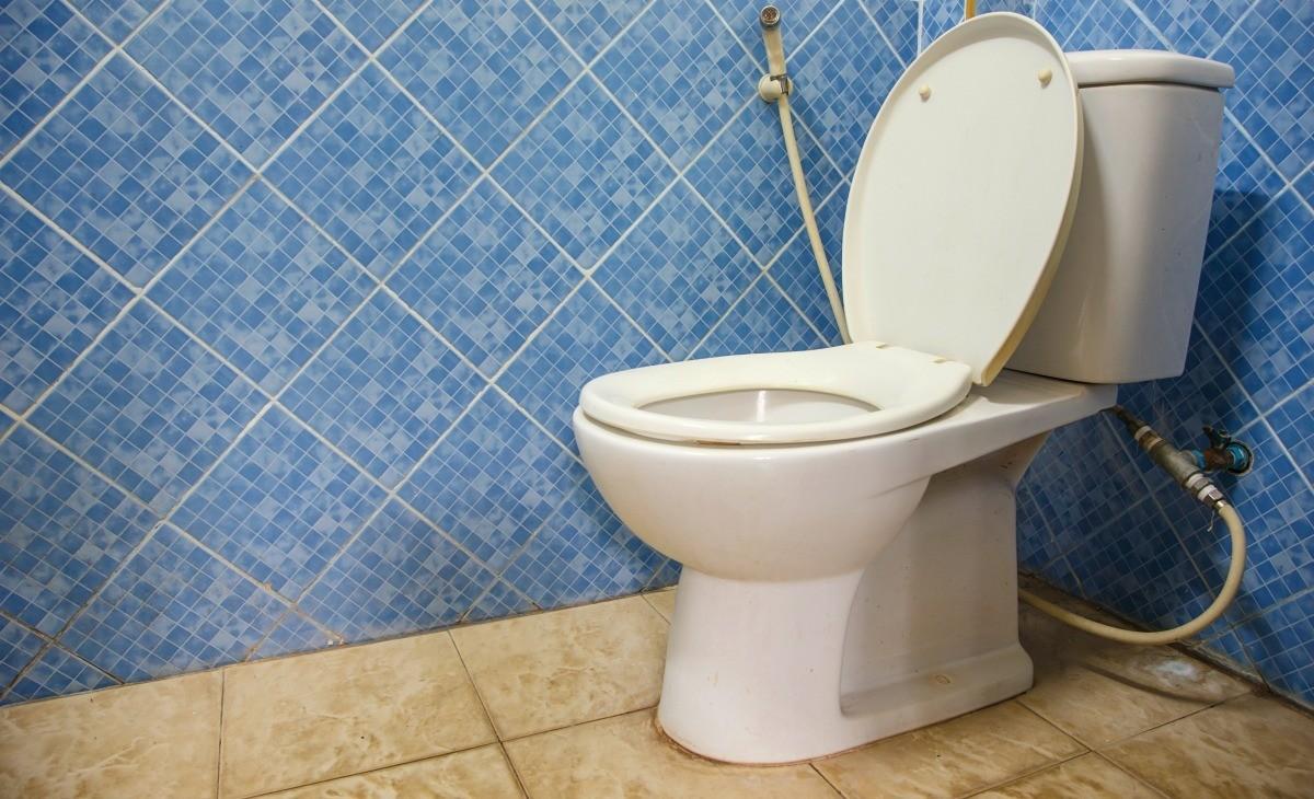 Laying Tile Around A Toilet Thriftyfun