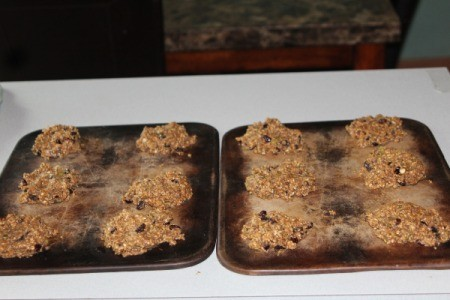 Protein and Fiber Packed Breakfast Cookies