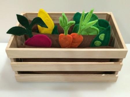 planted veggies 1