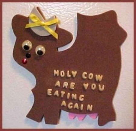brown cow magnet