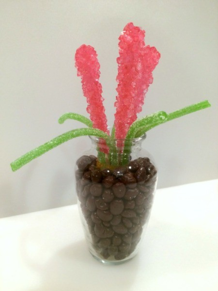 Rock Candy Flower Bouquet
