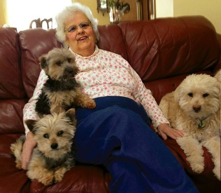Owner sitting with dogs on couch.