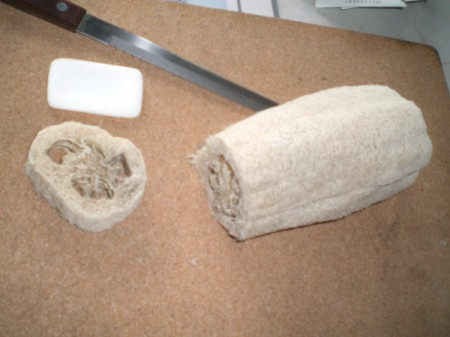 cut luffa sponge and bar of soap