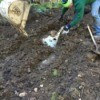 Repairing a Broken Septic Pipe
