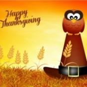 Sending Thanksgiving E-cards