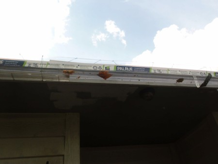 A clear shield for a roof rain gutter.