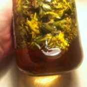 Dandelion Vinegar in jar