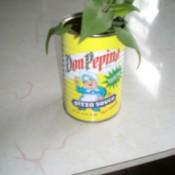 plant inside of self watering pot