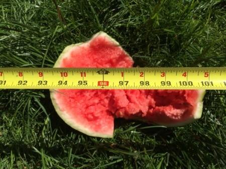 Watermelon Dry Ice Explosion